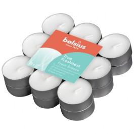 Bolsius frisse bries - fresh breeze geurtheelichtjes (4 uur) True Freshness
