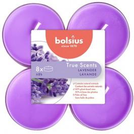 Bolsius lavendel - lavender maxi geurtheelichtjes
