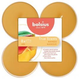 Bolsius mango maxi geurtheelichtjes