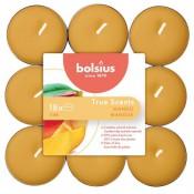 144 stuks Bolsius mango geurende theelichtjes